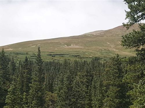 King William Lode, 100 Mineral RI : Alma : Park County : Colorado