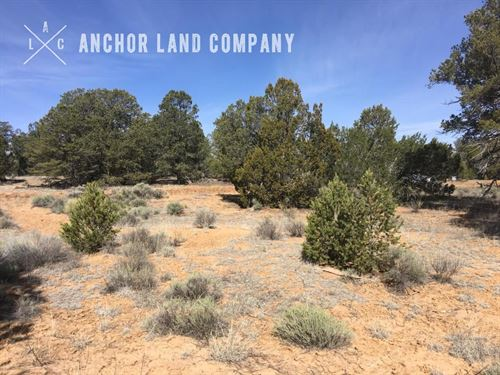 $499 Down Then $79 / Mo : Grants : Cibola County : New Mexico