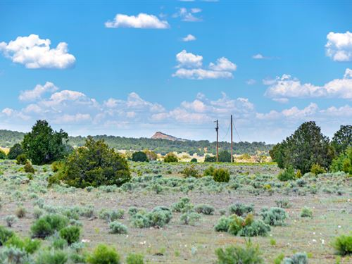 $499 Down & $249 Per Month : Ramah : Cibola County : New Mexico
