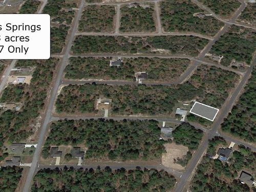 Pristine .23 Acre In Citrus Springs : Citrus Springs : Citrus County : Florida