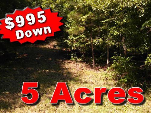 5 Acre Mini Farm Owner Financing : White Plains : Hancock County : Georgia