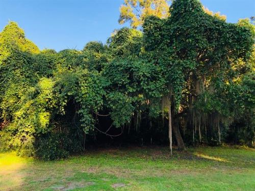 Lot On Golf Course 778557 : Chiefland : Levy County : Florida