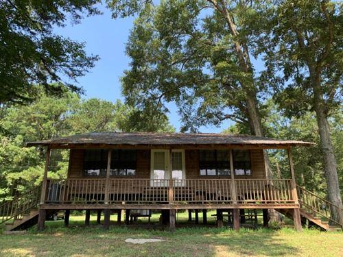 Camp House In Washington Parish : Angie : Washington Parish : Louisiana
