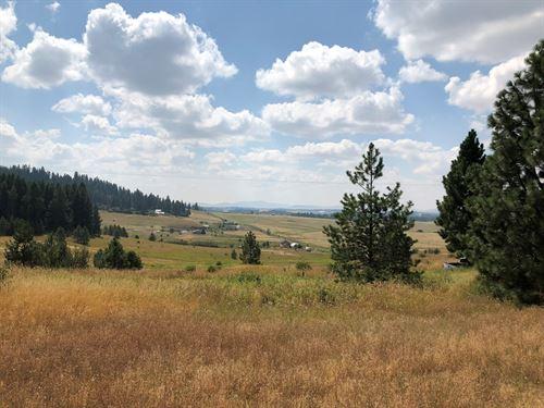 North Idaho Acreage Close to Coeur : Worley : Kootenai County : Idaho