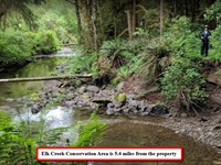 River Frontage On Tassel Creek : Forks : Clallam County : Washington