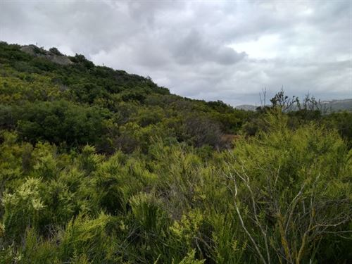San Diego County Vacant Land : Campo : San Diego County : California