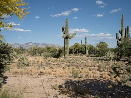 Settle In This 2.62 Acres In Tucson : Tucson : Pima County : Arizona