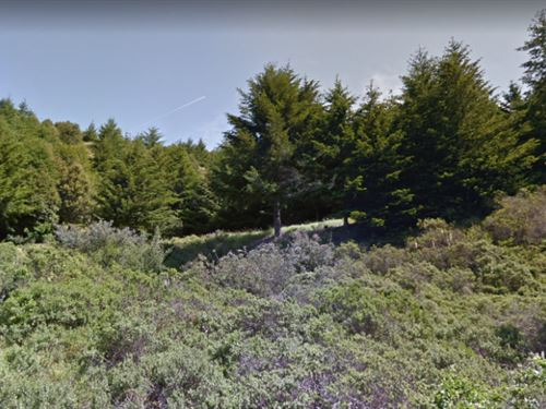 Ocean View Property Pacific Ocean : Whitethorn : Humboldt County : California