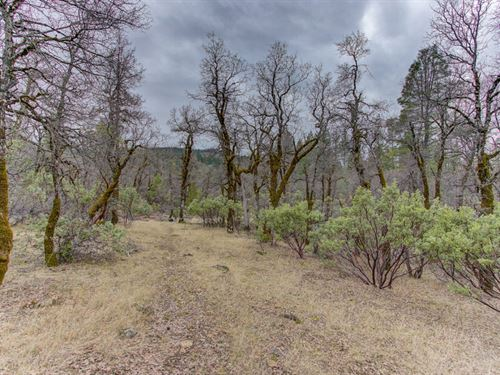Drive Up In Your Rv And Move In : Oak Run : Shasta County : California