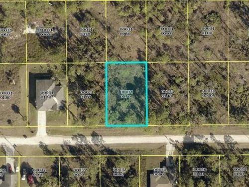 Nice Lehigh Acre Lot : Lehigh Acres : Lee County : Florida