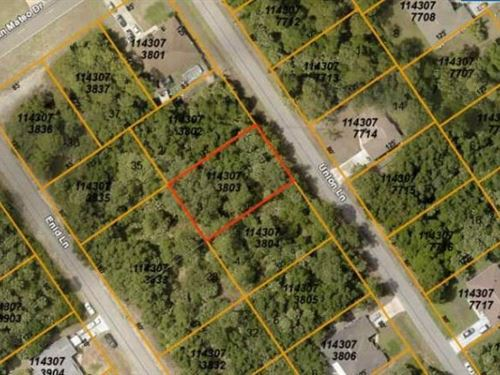 Amazing North Port Lot : North Port : Sarasota County : Florida