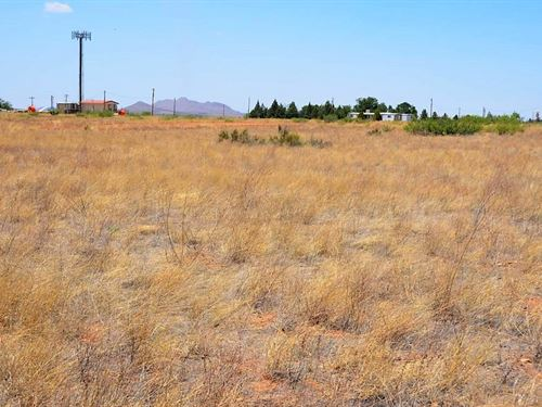 Nice Lot, Homes, Views, $100 P/Mo : Sunizona : Cochise County : Arizona