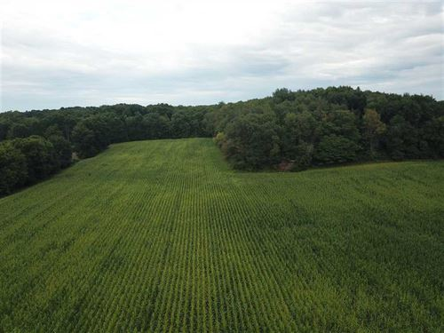 Cass County, 19.05 Acres Build : Marcellus : Cass County : Michigan
