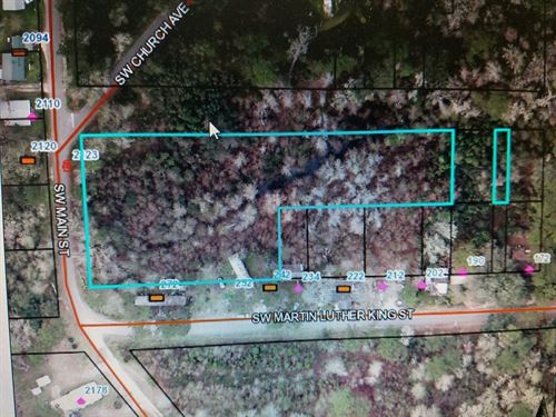 Land For Sale in North Florida : Greenville : Madison County : Florida