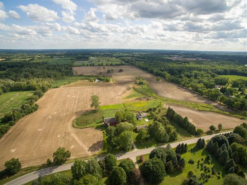 Country Estate Land Lot For Sale : Dexter : Washtenaw County : Michigan