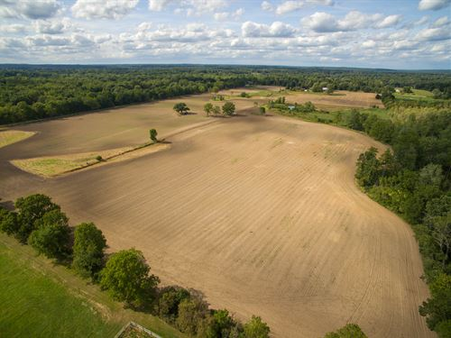 Dexter Vacant Land, Estate Size : Dexter : Washtenaw County : Michigan