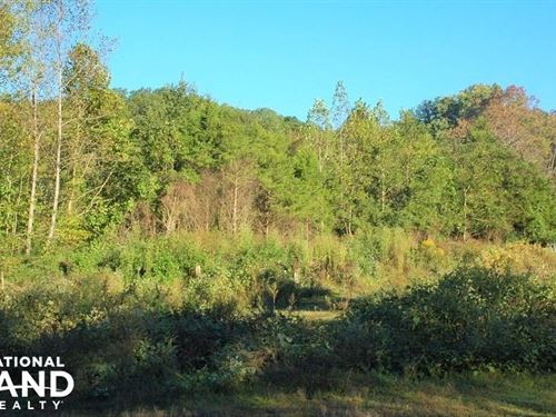 Residential Acreage Off Millertown : Knoxville : Knox County : Tennessee