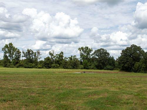 Mini-Farm Potential For Sale Pike : Magnolia : Pike County : Mississippi