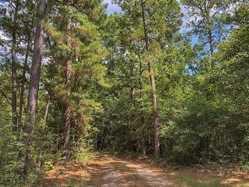 1/10th Interest Lost Indian Lake : Huntsville : Walker County : Texas