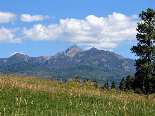 Reserve At Pagosa Peak, Lot 130 : Pagosa Springs : Archuleta County : Colorado