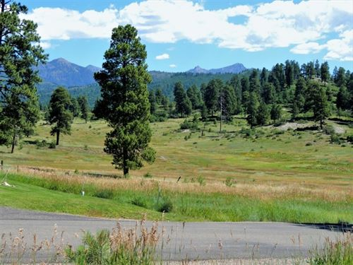Reserve At Pagosa Peak, Lot 112 : Pagosa Springs : Archuleta County : Colorado