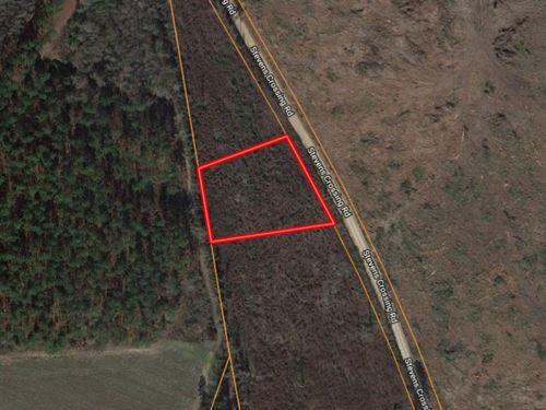 1 Acre Homesite in Midville, GA : Midville : Emanuel County : Georgia