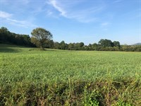 .55 Acres Unrestricted Land Hawkins : Whitesburg : Hawkins County : Tennessee