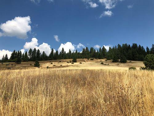 North Idaho Land Coeur D'alene : Worley : Kootenai County : Idaho