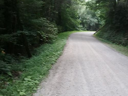 Wooded Tract With Building Sites : Troutdale : Grayson County : Virginia