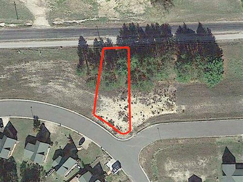 .25 Acre Lot Outside Warrens : Warrens : Monroe County : Wisconsin