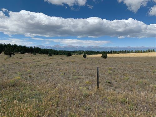 5+ Acres in Eastcliffe Subdivison : Westcliffe : Custer County : Colorado