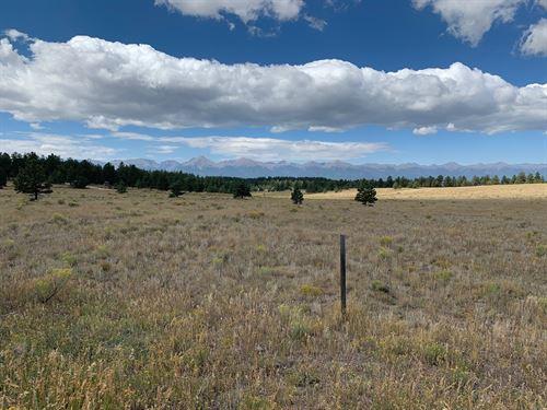 5+ Acres in Eastcliffe Subdivison : Westcliffe : Custer County : Colorado