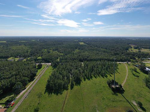 Moore Road Homesite : Lakeland : Polk County : Florida
