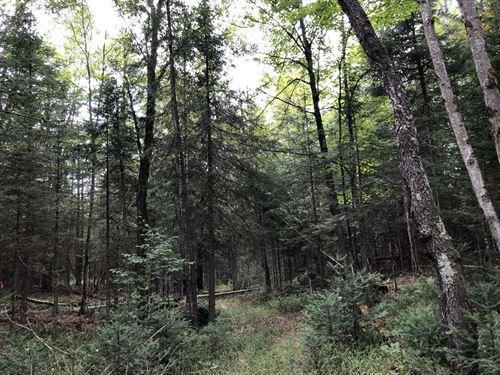 Adirondack Home Or Camp Site : Remsen : Oneida County : New York
