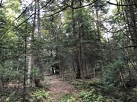 Home Or Camp Site Near Kayuta Lake : Remsen : Oneida County : New York