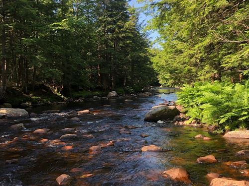 Along Little Black Creek : Remsen : Oneida County : New York