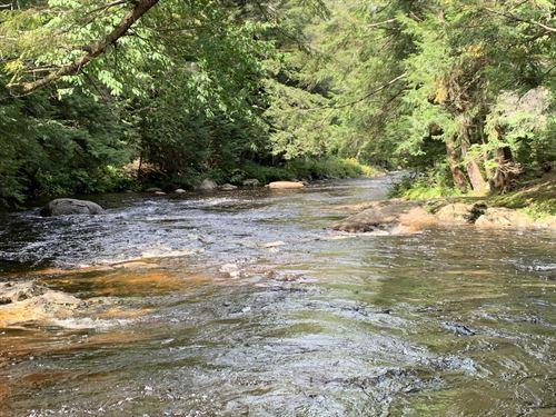Little Black Creek Frontage : Remsen : Oneida County : New York