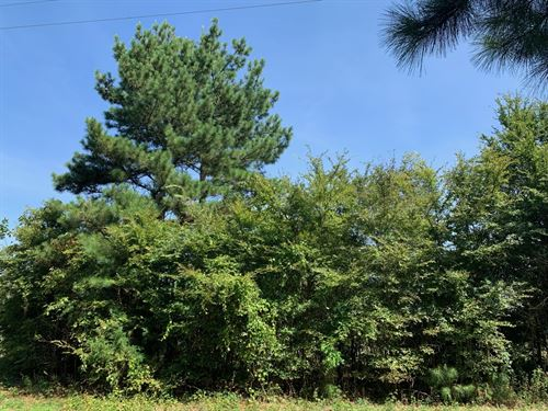 Build Your Next Home On 2.4 Ac Lot : Quitman : Wood County : Texas