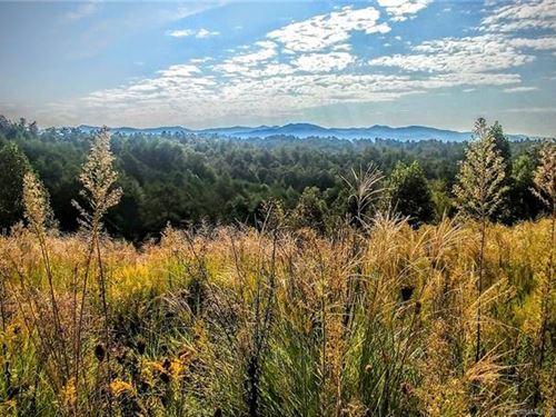 Bull Creek Tract : Marshall : Madison County : North Carolina