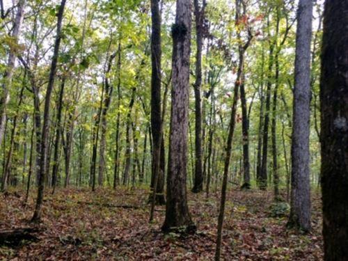 Estes Country Estates, Bolingbroke : Macon : Monroe County : Georgia