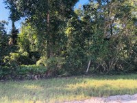 4.79 Acres 778692 : Chiefland : Levy County : Florida