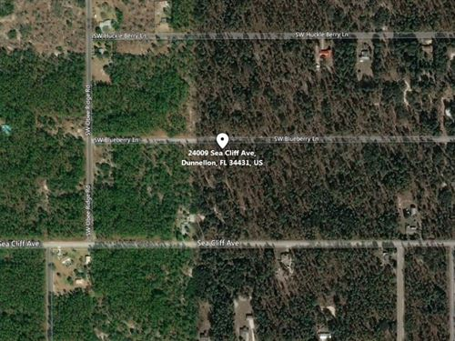 .99 Acres For Sale In Dunnellon,Fl : Dunnellon : Marion County : Florida