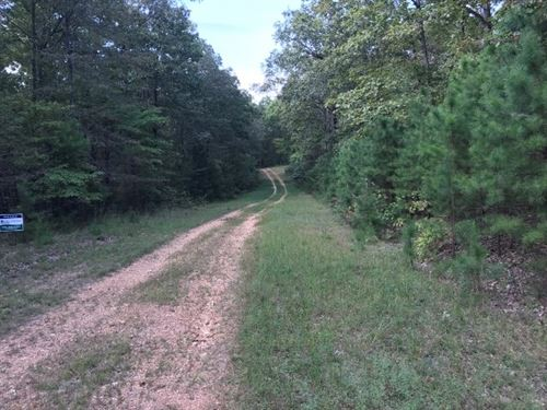 3 Wooded Acres Close to National : Fifty-Six : Stone County : Arkansas