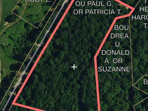 Nice Small Tract Close To Hnf : Crosby : Amite County : Mississippi