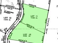 Alaska Land For Sale, 9.97 Acres : Yukon Koyukuk : Alaska