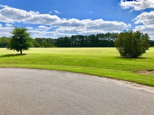 Land For Sale in Beaufort County Nc : Washington : Beaufort County : North Carolina