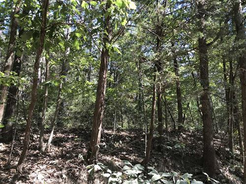 10 Acres of Wooded Land Near : Cave City : Sharp County : Arkansas