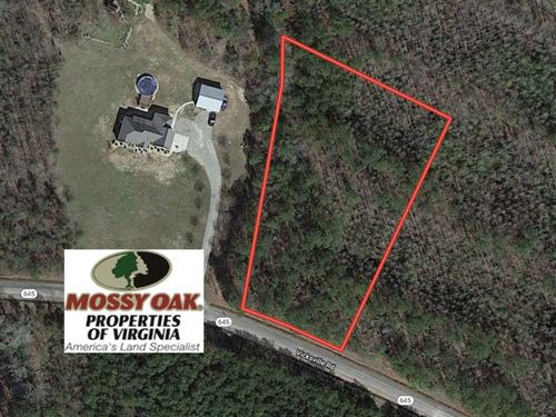 1+ Acres of Undeveloped Land : Sedley : Southampton County : Virginia