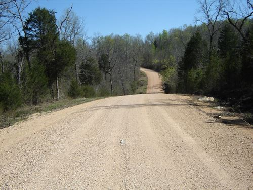 Private Wooded Land TN To Build : Bath Springs : Decatur County : Tennessee