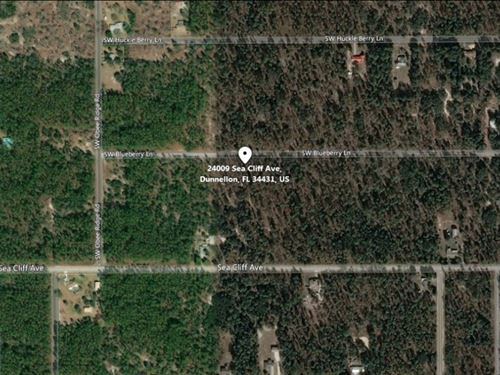 .99 Acres For Sale In Dunnellon : Dunnellon : Marion County : Florida